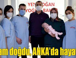790 gram doğdu, ANKA'da hayat buldu