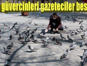 Aç kalan güvercinleri gazeteciler besledi