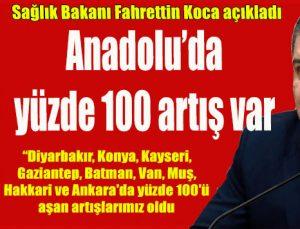 Anadolu'da artış yaşanıyor