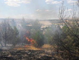 Çadırkent'in dibinde orman yangını