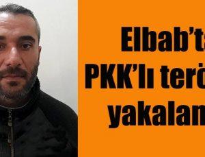 Elbab'ta PKK'lı terörist yakalandı