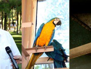 Gaziantep Hayvanat Bahçesi yeni üyelerine merhaba dedi