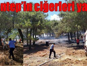 Gaziantep'in ciğerleri yanıyor