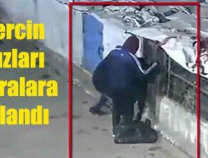 Güvercin hırsızları kameralara yakalandı