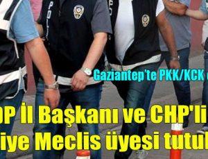 HDP İl Başkanı ve CHP'li iki belediye meclis üyesi tutuklandı
