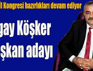 İYİ Parti'de İl Kongresi hazırlıkları devam ediyor