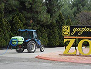 Kaplan Nadia korona virüs oldu, Gaziantep Hayvanat Bahçesi'nde tedbirler arttırıldı