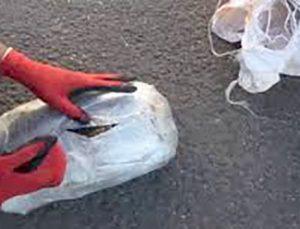 Nizip'te üzerinde esrar yakalanan 6 kişi gözaltına alındı