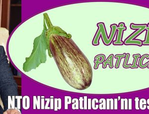 NTO Nizip Patlıcanı'nı tescilledi