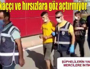 Polis kapkaççı ve hırsızlara göz açtırmıyor