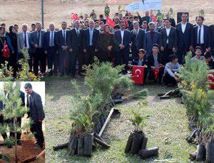Şahinbey'de 11 bin fidan toprakla buluşturuldu