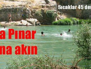 Sıtma Pınar Çayı'na akın