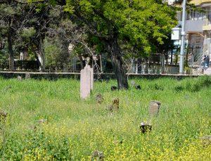 Tarihi mezarlara ilgisizlik tepkisi