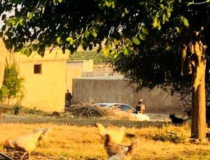 Terör örgütüne yardım yataklık edenlere operasyon: 9 gözaltı