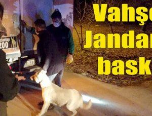 Vahşete Jandarma baskını